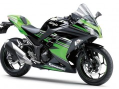 Kawasaki Ninja 250 LTD Livery KRT