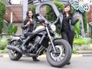 rebel CMX500